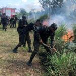 AS CRÍTICAS DE GILMAR MENDES E OS DESASTRES À VISTA DAS FORÇAS ARMADAS